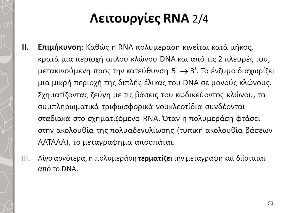 Λειτουργίες RNA 3/4 Ακολουθεί η ωρίμανση του RNA με:
