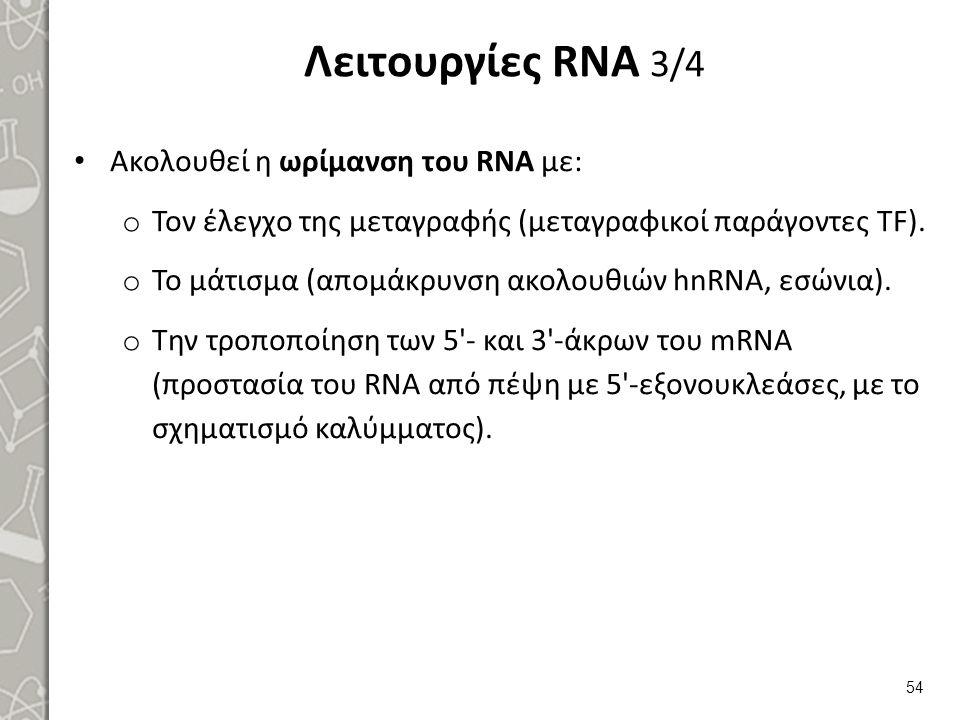 Λειτουργίες RNA 4/4 Η σύνθεση του RNA απαιτεί και χαρακτηρίζεται από: