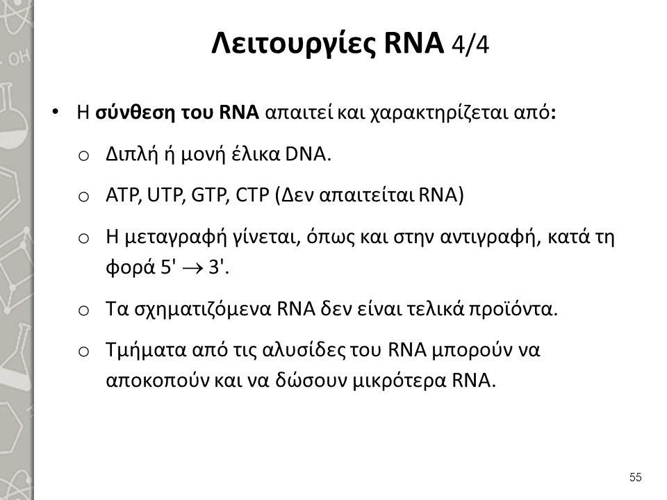 Μετάφραση (Πρωτεϊνοσύνθεση) RNA  Πρωτεΐνη 1/7