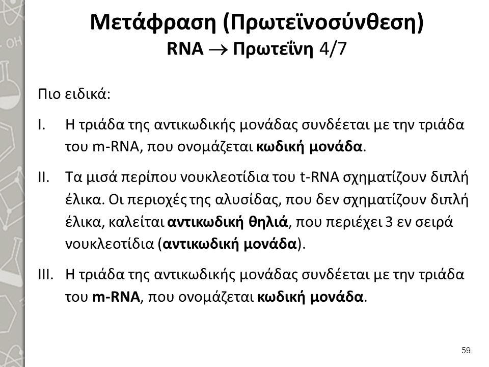 Μετάφραση (Πρωτεϊνοσύνθεση) RNA  Πρωτεΐνη 5/7