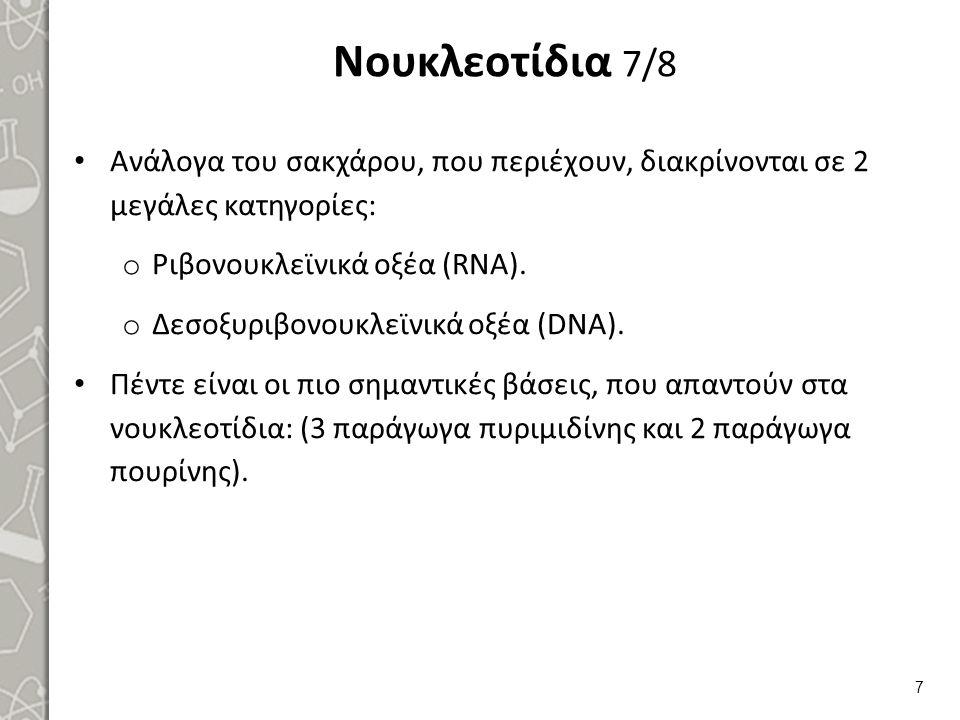 Νουκλεοτίδια 8/8 Οι αζωτούχες βάσεις διακρίνονται σε: