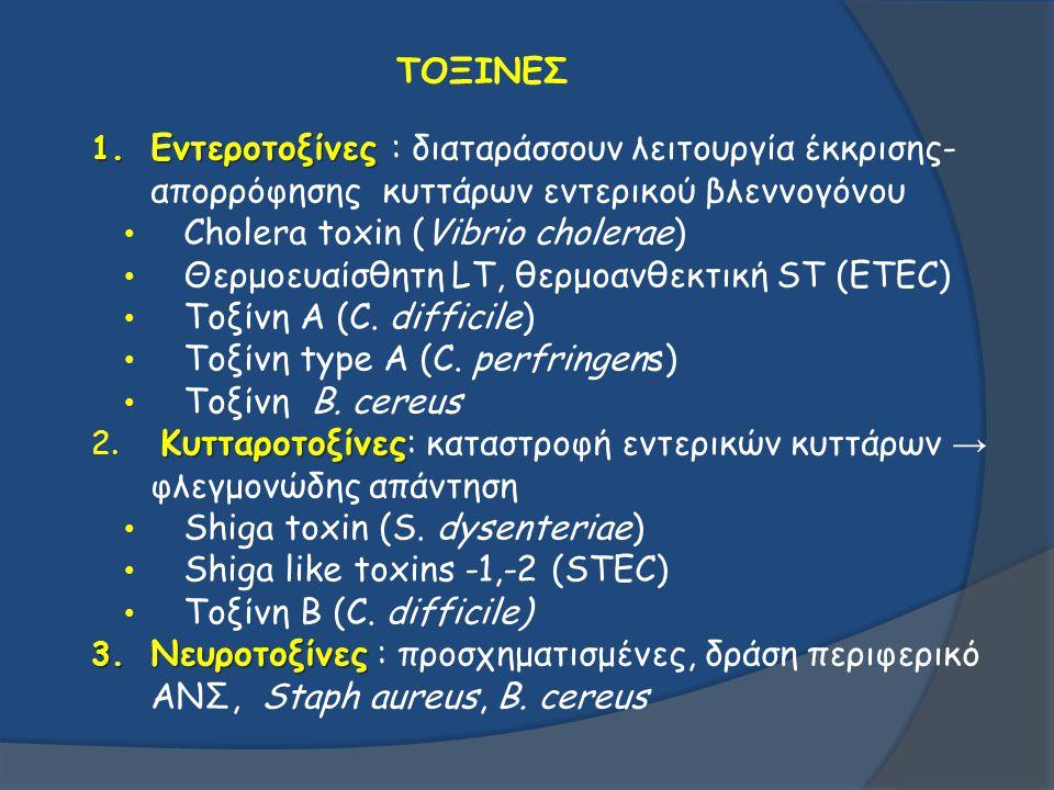 Cholera toxin (Vibrio cholerae)