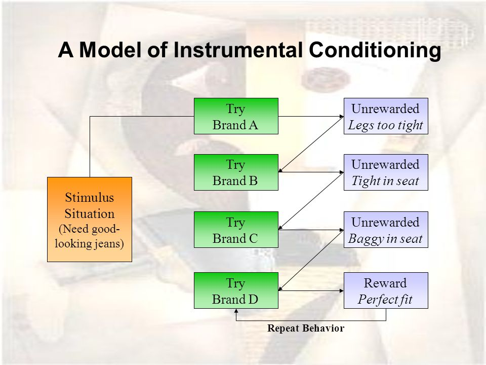 A Model of Instrumental Conditioning