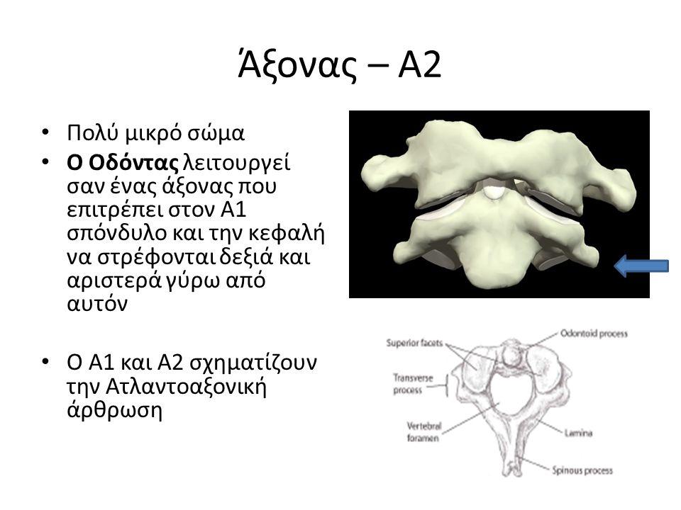 Άξονας – Α2 Πολύ μικρό σώμα