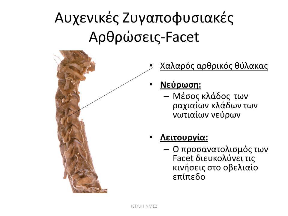 Αυχενικές Ζυγαποφυσιακές Αρθρώσεις-Facet