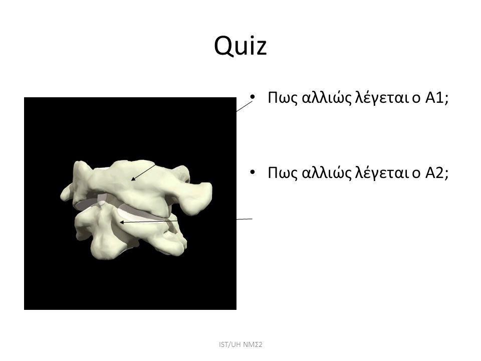Quiz Πως αλλιώς λέγεται ο Α1; Πως αλλιώς λέγεται ο Α2; ΙST/UH NMΣ2