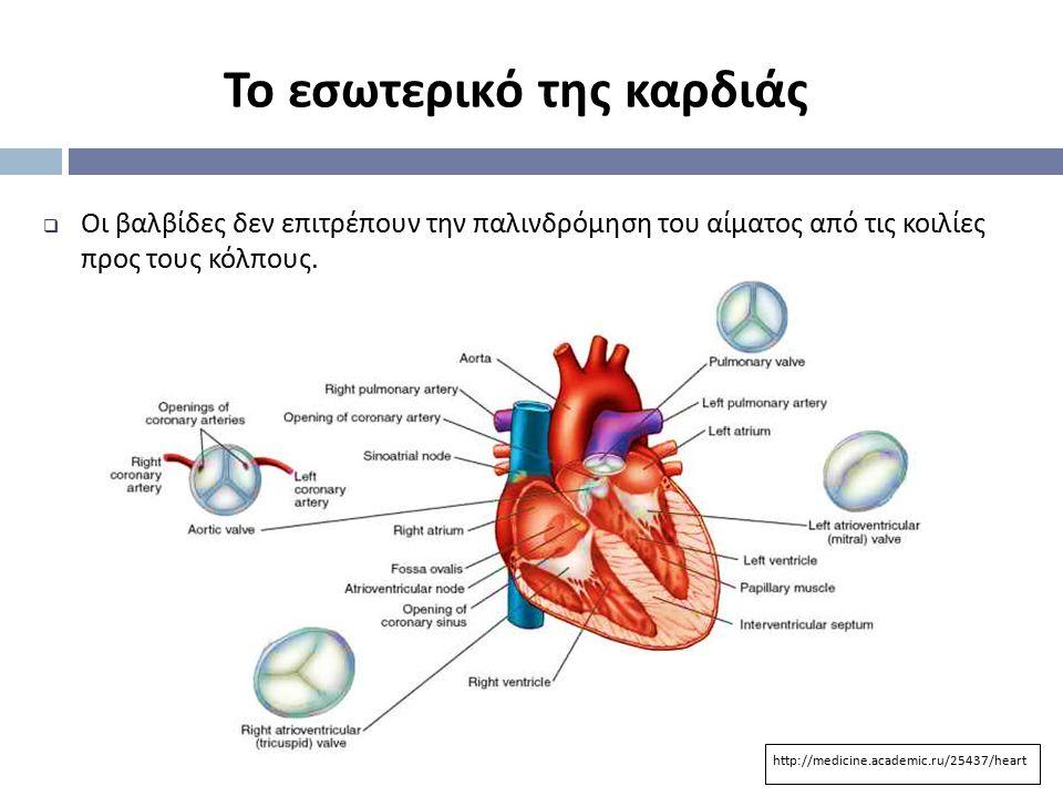 Το εσωτερικό της καρδιάς