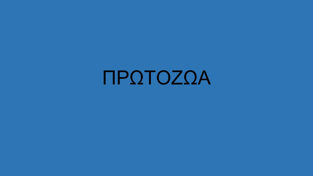 ΠΡΩΤΟΖΩΑ