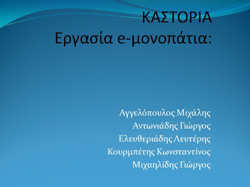 ΚΑΣΤΟΡΙΑ Εργασία e-μονοπάτια: