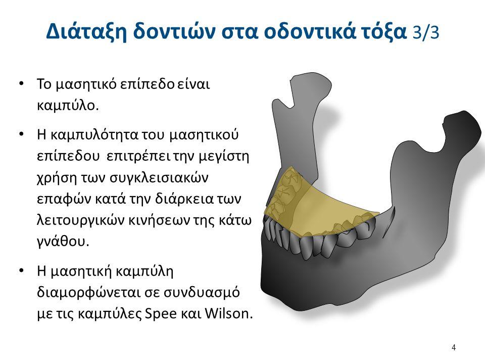 Συγκλεισιακές σχέσεις οδοντικών τόξων 1/2