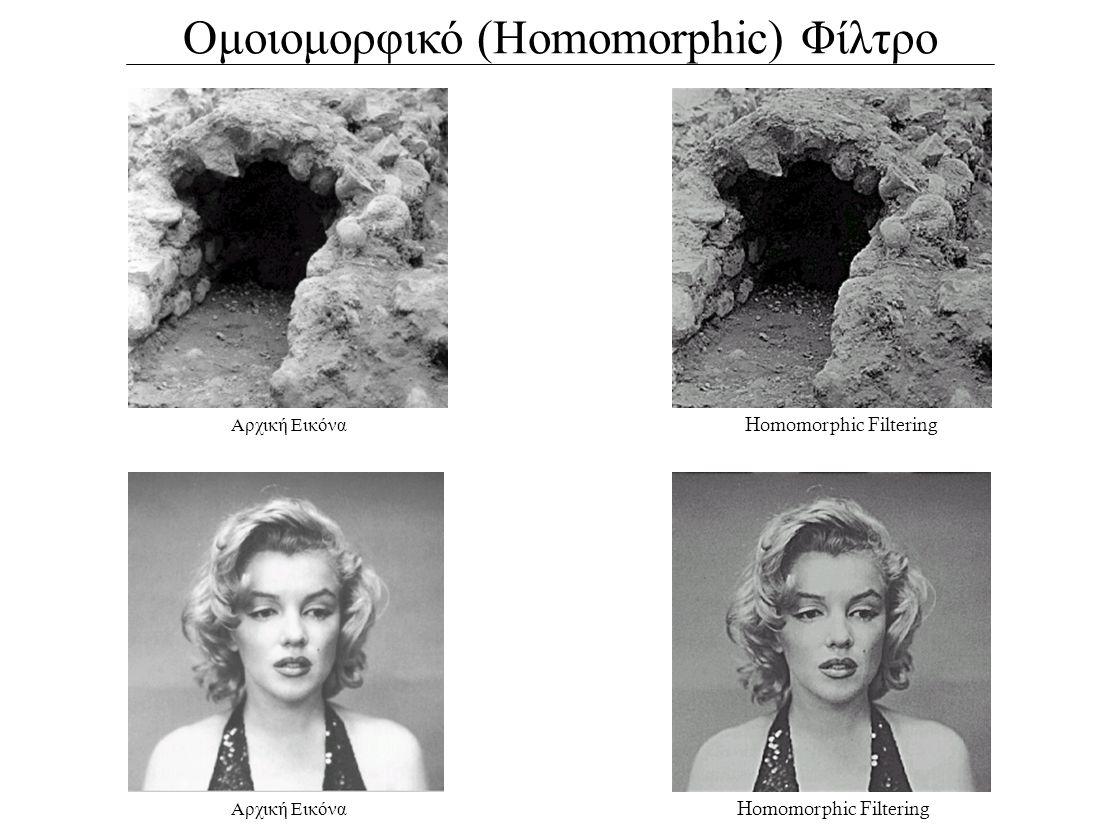 Ομοιομορφικό (Homomorphic) Φίλτρο