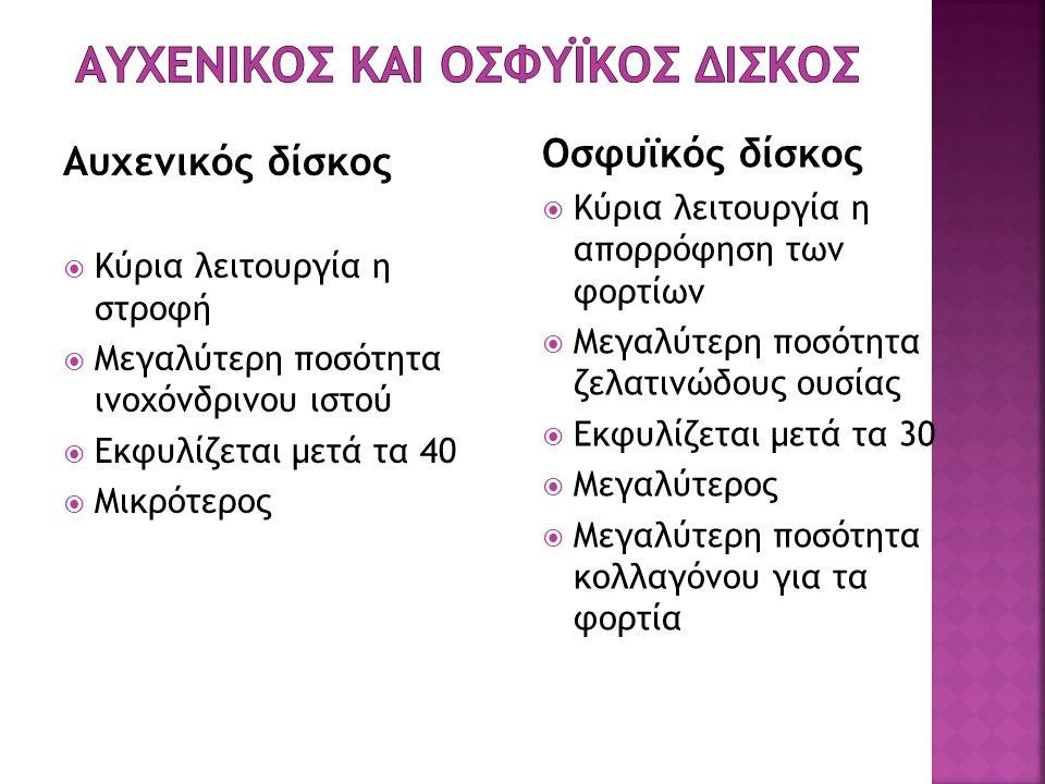 Αυχενικος και Οσφυϊκος Δισκος
