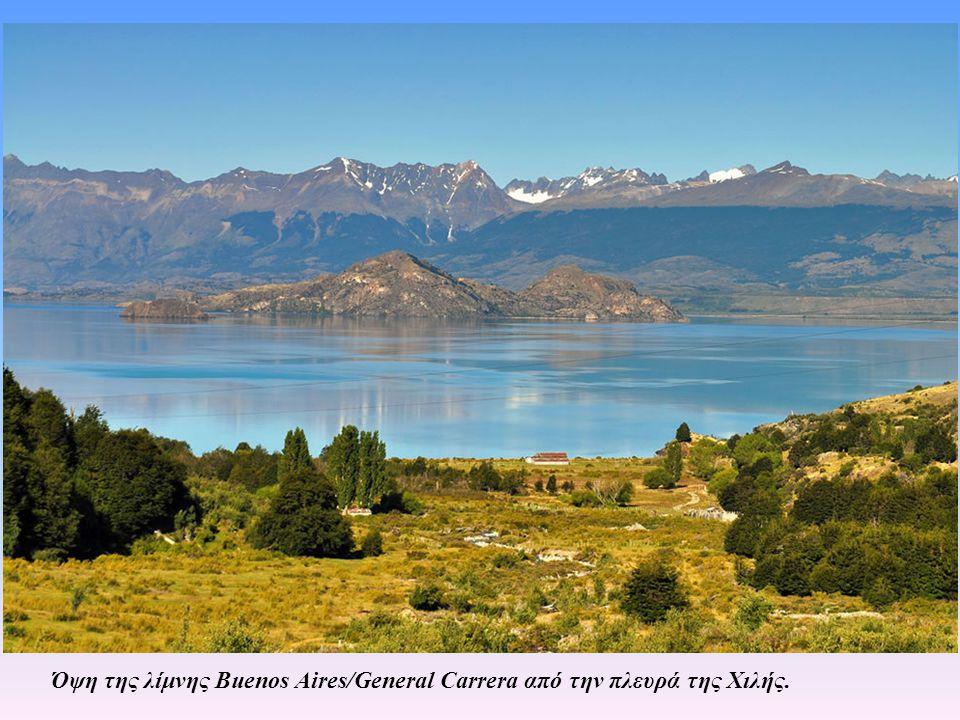 Όψη της λίμνης Buenos Aires/General Carrera από την πλευρά της Χιλής.