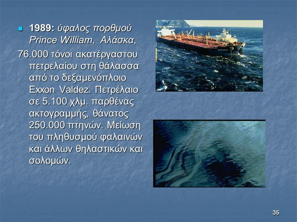 1989: ύφαλος πορθμού Prince William, Αλάσκα,