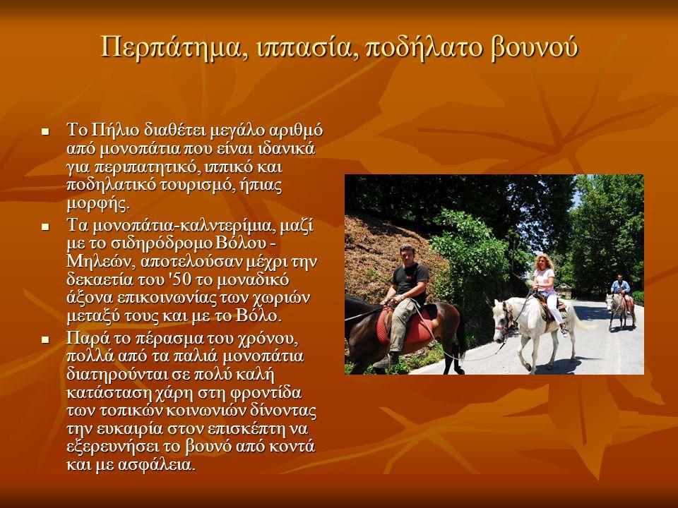 Περπάτημα, ιππασία, ποδήλατο βουνού