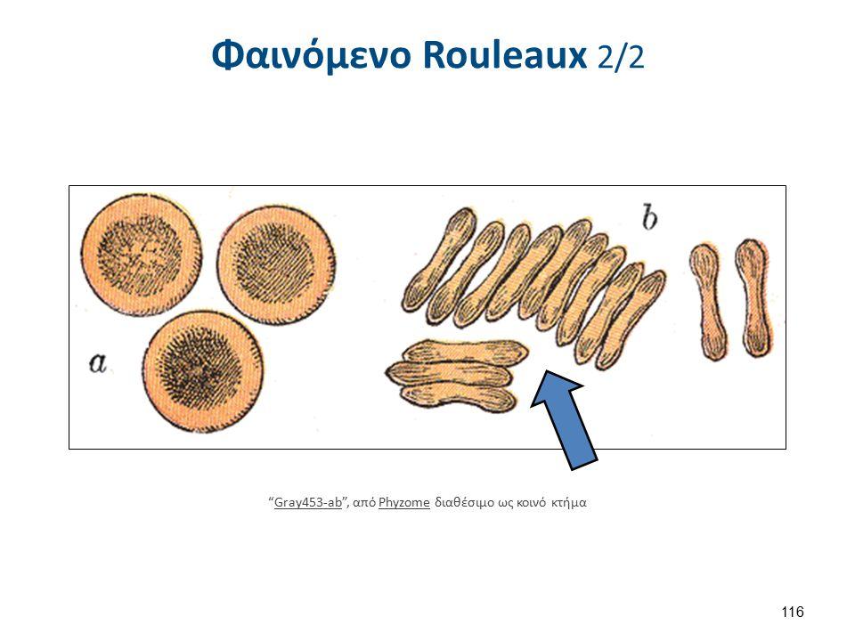 Εύρος Kατανομής Mεγέθους Eρυθροκυττάρων (RDW) 1/2