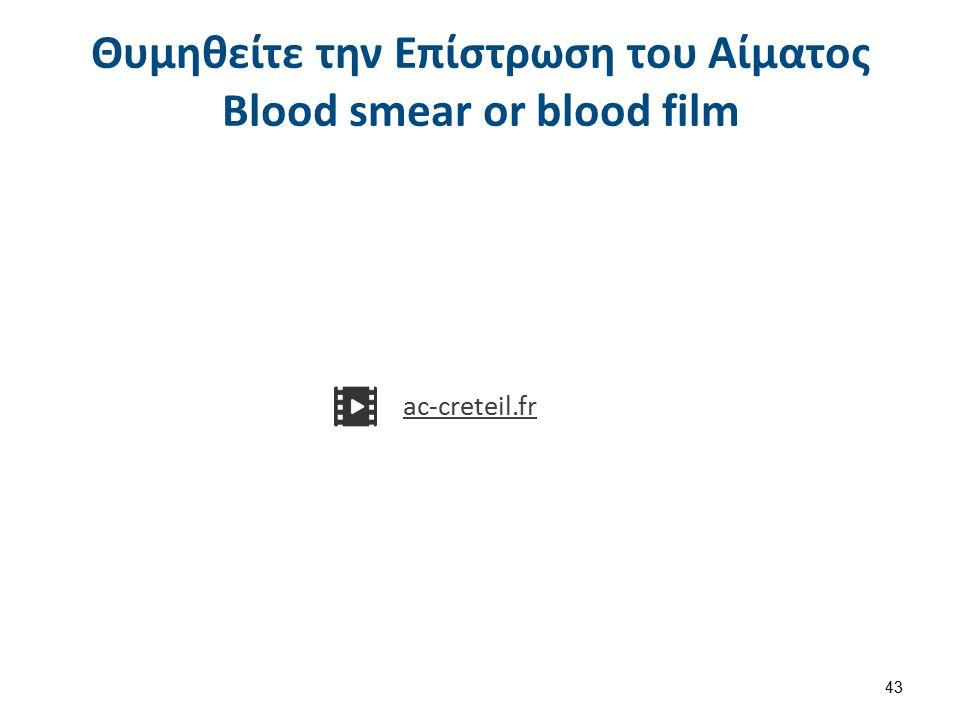 Επίστρωση Αίματος – Blood Film