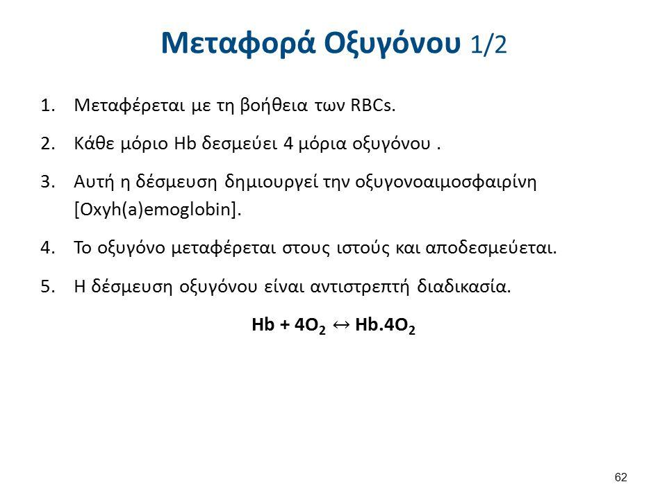 Μεταφορά Οξυγόνου 2/2 Πολυπεπτιδικές αλυσίδες 2 Δέσμευση οξυγόνου