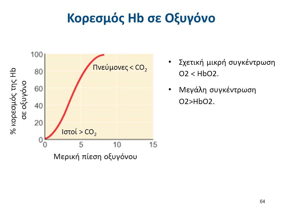 H Επίδραση του CO2 H2O + CO2 ↔ H2CO3 H2CO3 ↔ H+ + HCO3-