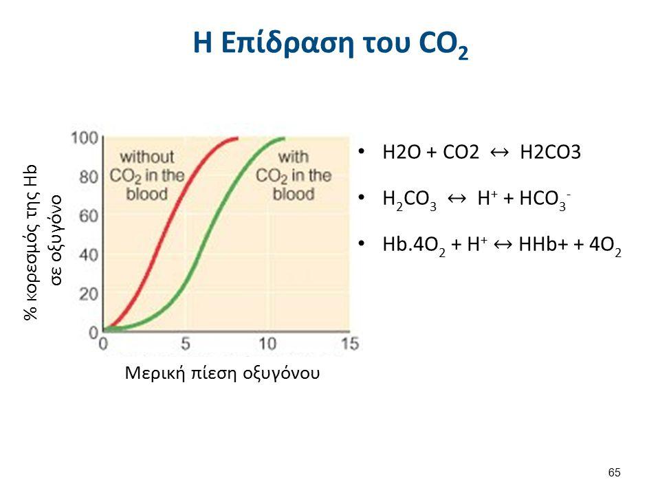 Όταν η τάση του CO2 είναι υψηλή η Hb: