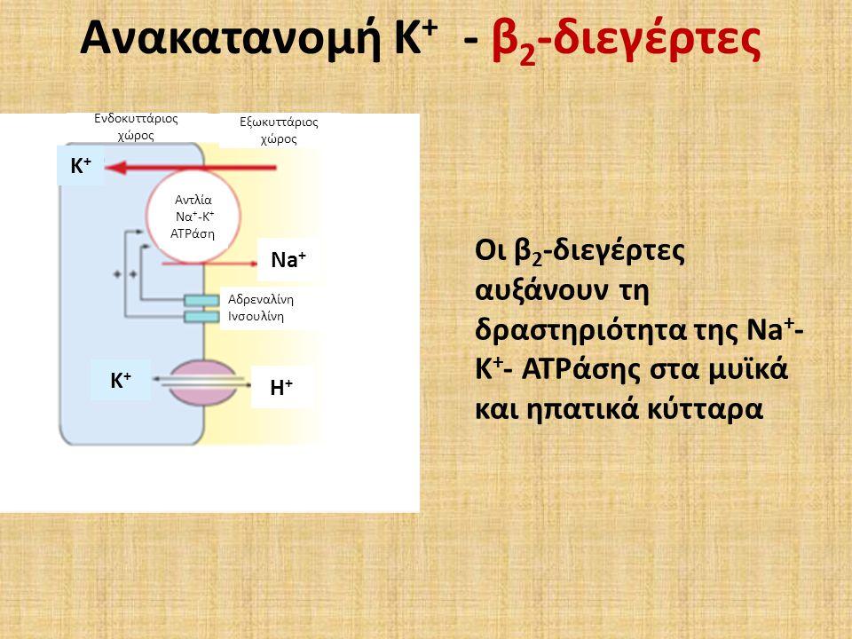 Ανακατανομή Κ+ - β2-διεγέρτες