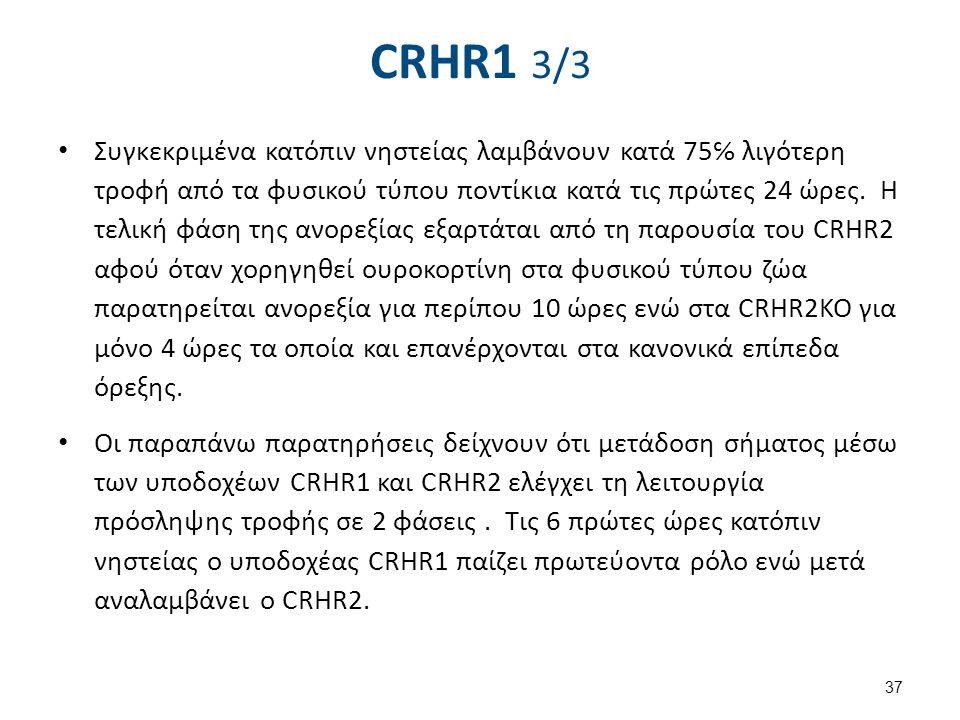 CRH, ACTH, Leptin, cortisol 1/3