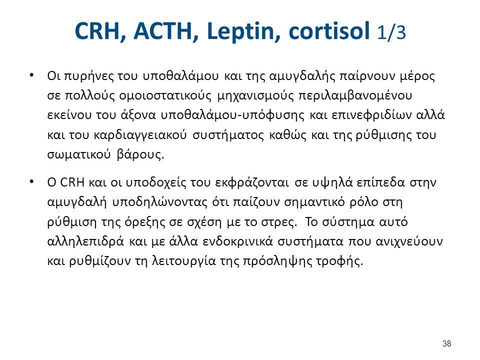 CRH, ACTH, Leptin, cortisol 2/3