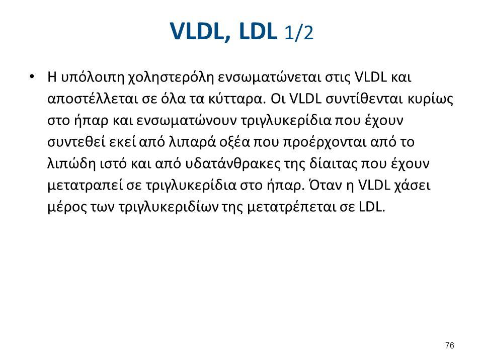 VLDL, LDL 2/2