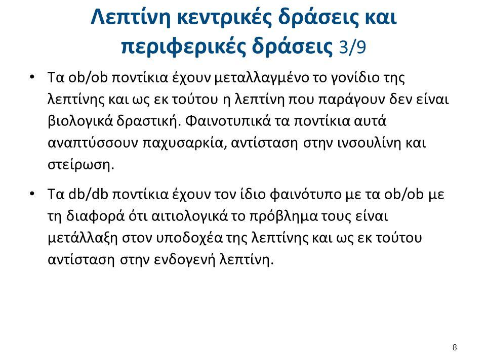 Λεπτίνη κεντρικές δράσεις και περιφερικές δράσεις 4/9