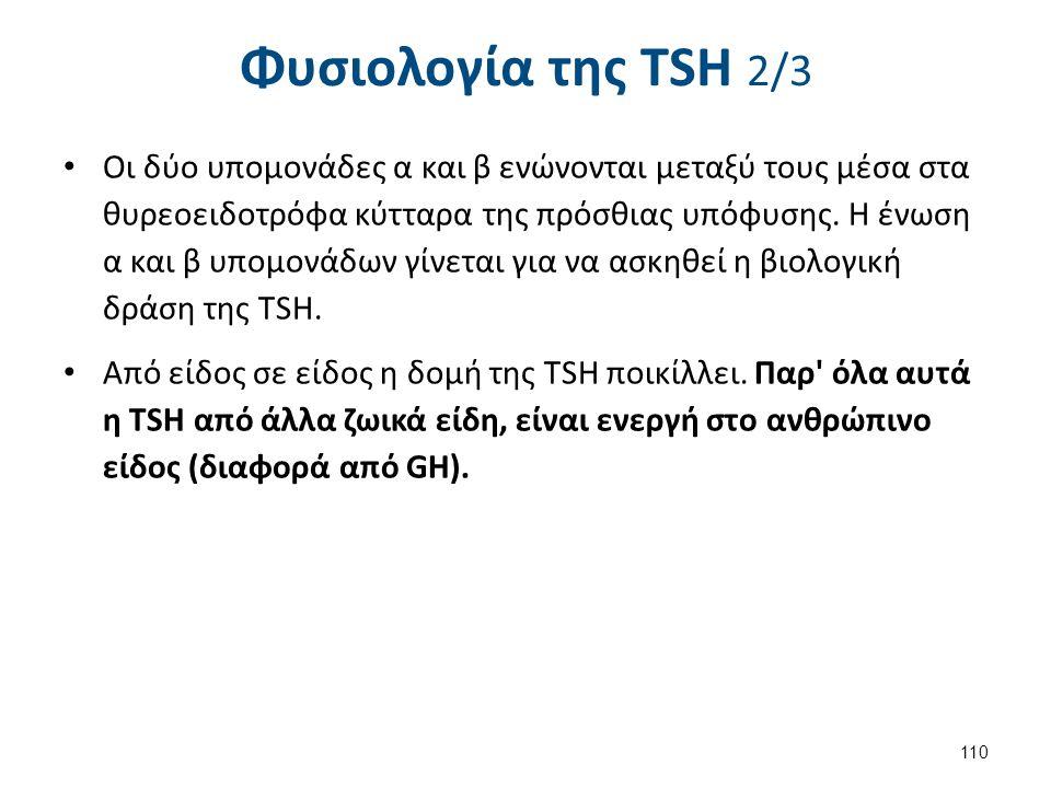Φυσιολογία της ΤSH 3/3