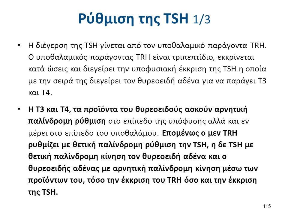 Ρύθμιση της TSH 2/3