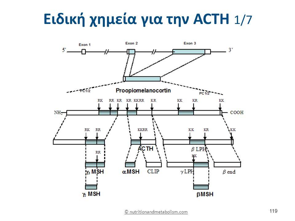 Ειδική χημεία για την ACΤH 2/7