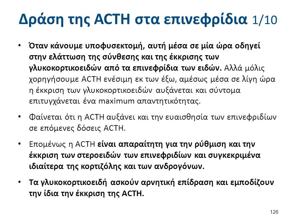 Δράση της ACTH στα επινεφρίδια 2/10