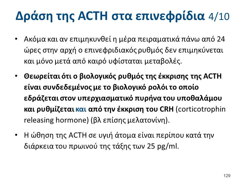 Δράση της ACTH στα επινεφρίδια 5/10