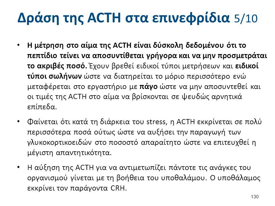 Δράση της ACTH στα επινεφρίδια 6/10