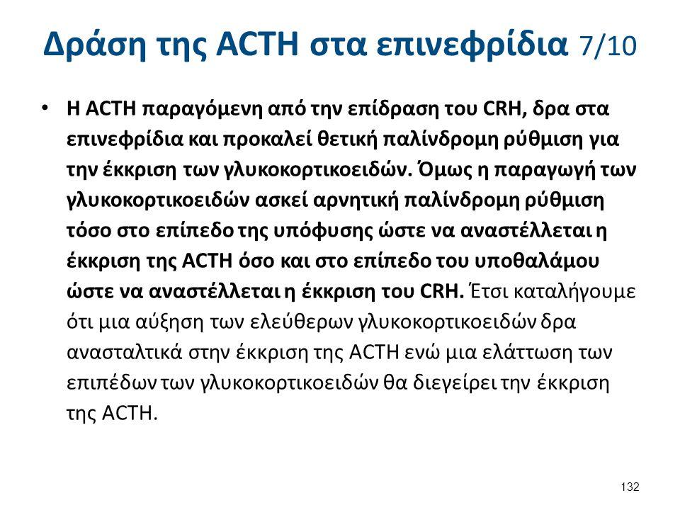 Δράση της ACTH στα επινεφρίδια 8/10