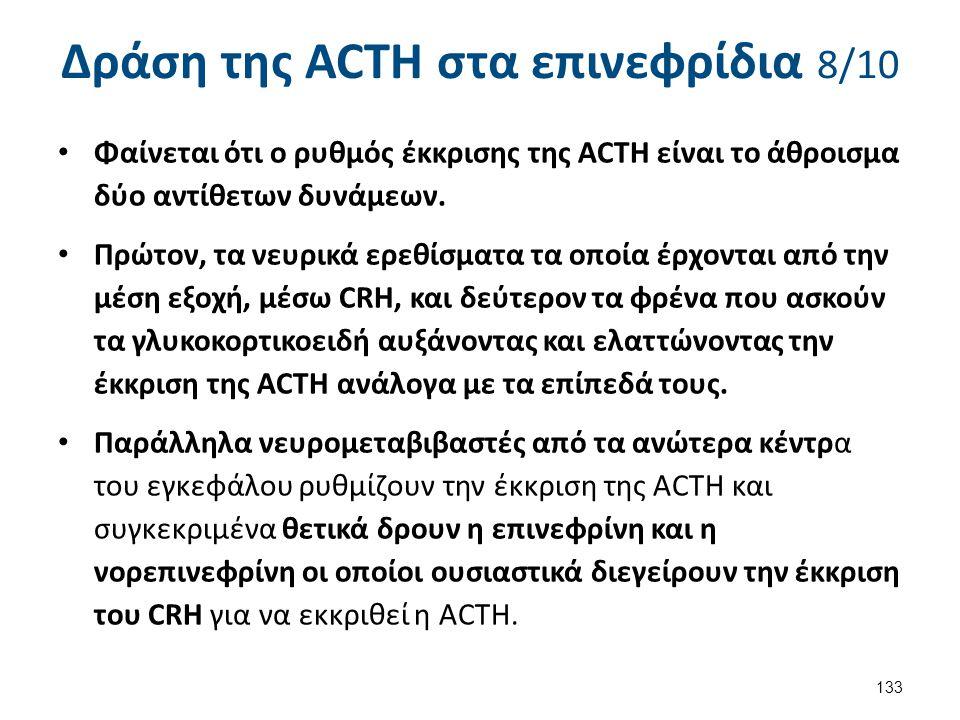 Δράση της ACTH στα επινεφρίδια 9/10