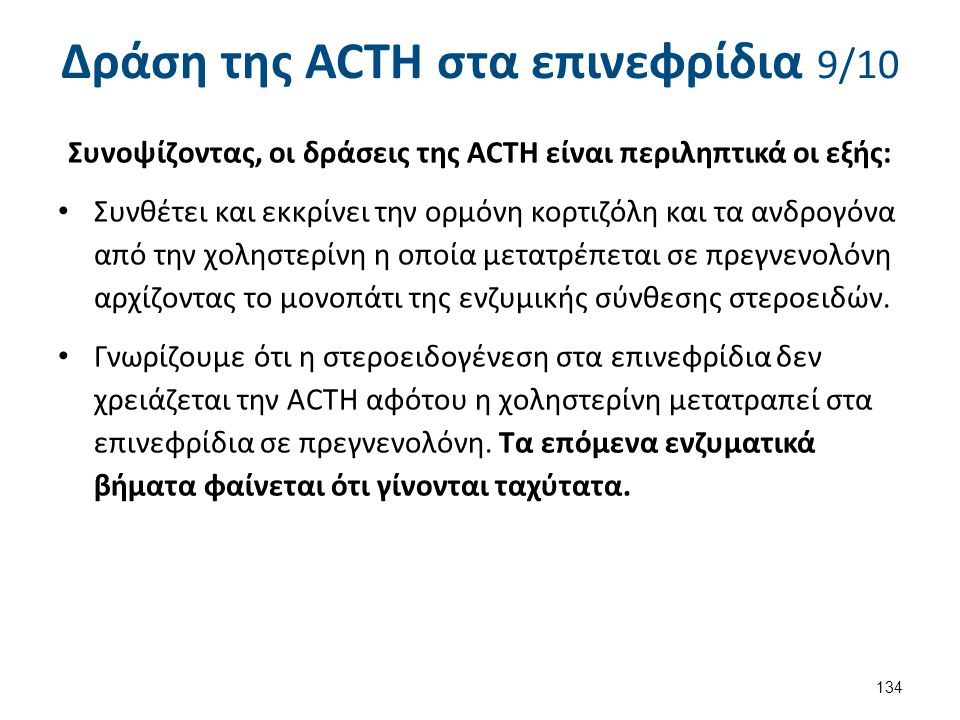 Δράση της ACTH στα επινεφρίδια 10/10