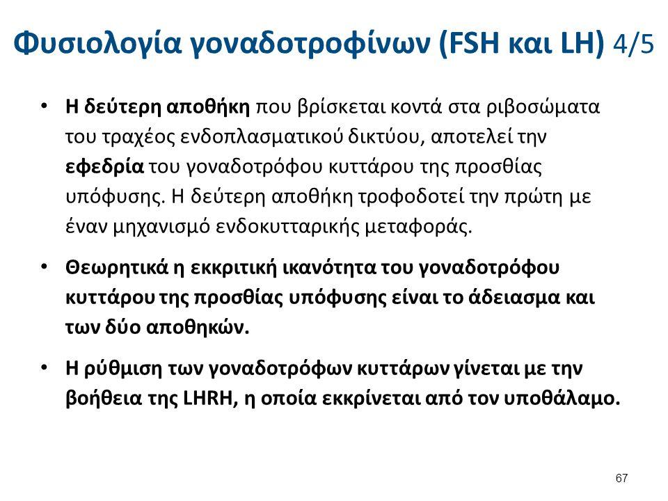Φυσιολογία γοναδοτροφίνων (FSH και LH) 5/5