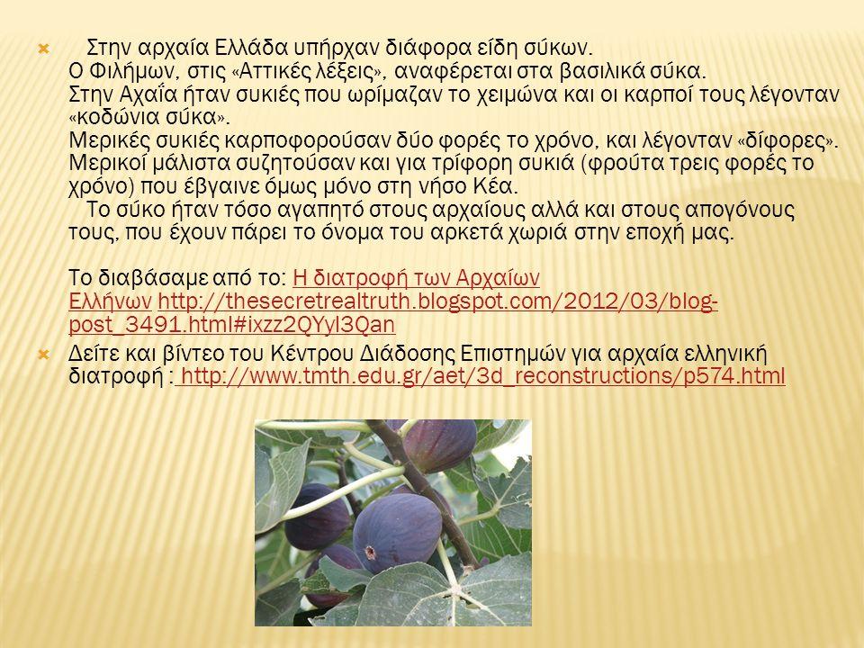 Στην αρχαία Ελλάδα υπήρχαν διάφορα είδη σύκων