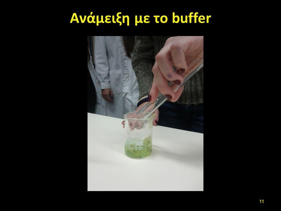 Πολτοποίηση Καλή ανάμειξη με το buffer και σύνθλιψη των φρούτων για 10 λεπτά για να πολτοποιηθούν,