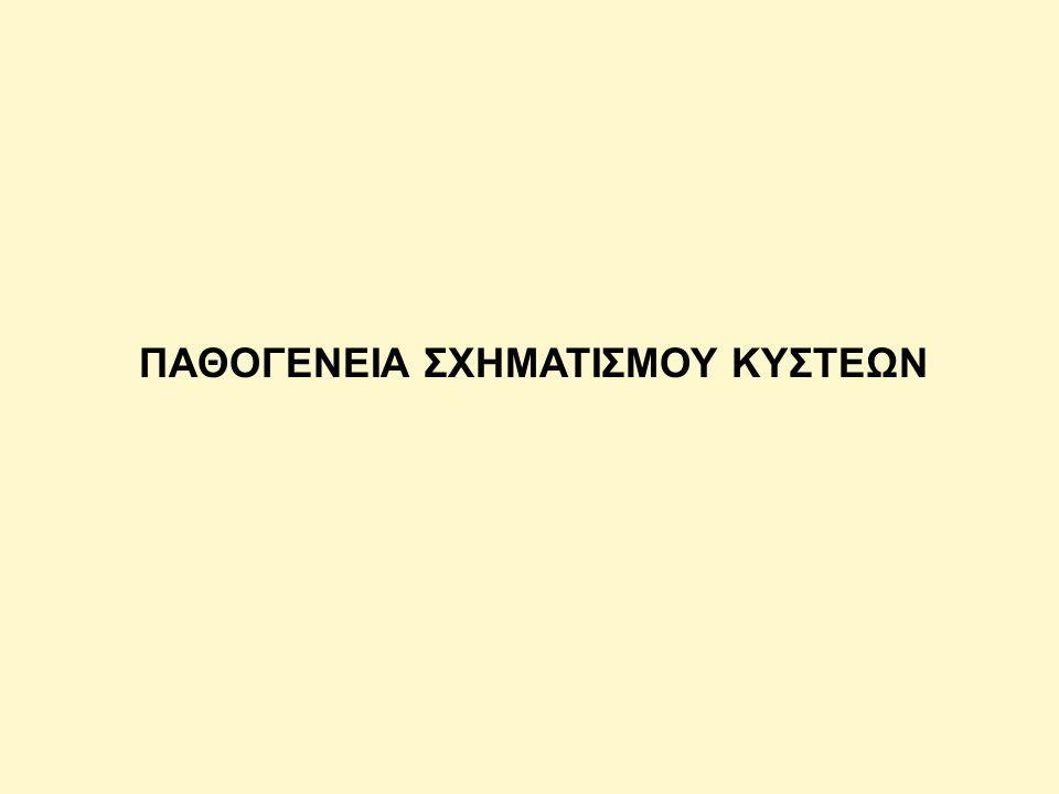 ΠΑΘΟΓΕΝΕΙΑ ΣΧΗΜΑΤΙΣΜΟΥ ΚΥΣΤΕΩΝ