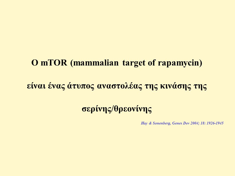 Ο mTOR (mammalian target of rapamycin)