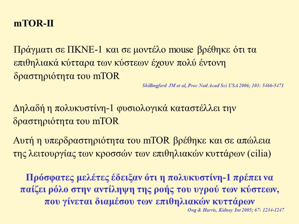 mTOR-II Πράγματι σε ΠΚΝΕ-1 και σε μοντέλο mouse βρέθηκε ότι τα επιθηλιακά κύτταρα των κύστεων έχουν πολύ έντονη δραστηριότητα του mTOR.