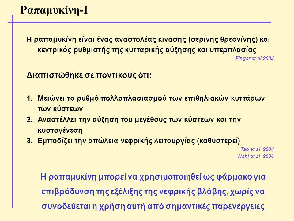 Ραπαμυκίνη-Ι Διαπιστώθηκε σε ποντικούς ότι: