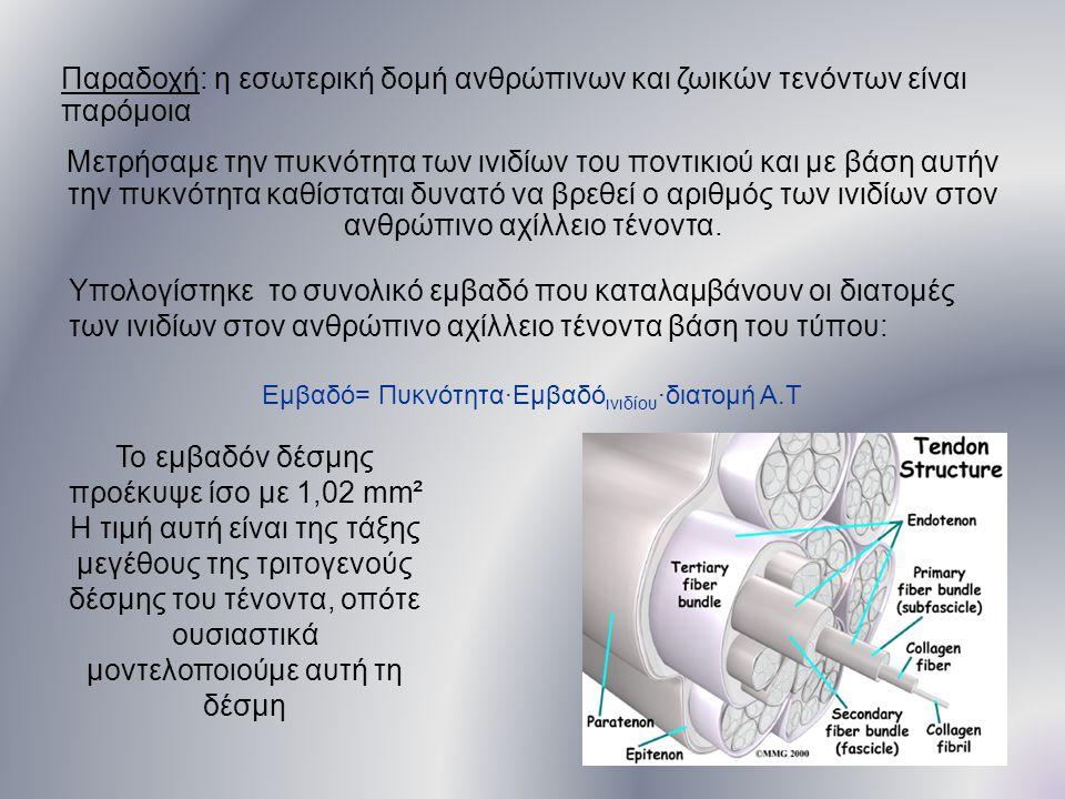 Το εμβαδόν δέσμης προέκυψε ίσο με 1,02 mm²