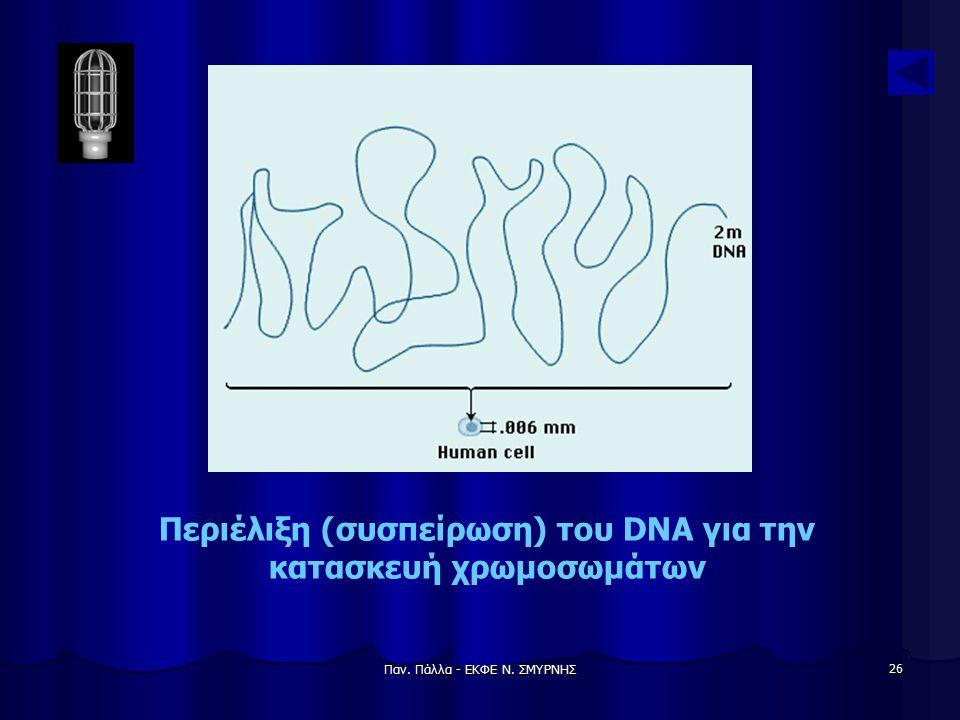 Περιέλιξη (συσπείρωση) του DNA για την κατασκευή χρωμοσωμάτων