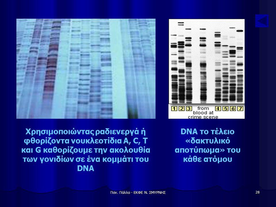 DNA το τέλειο «δακτυλικό αποτύπωμα» του κάθε ατόμου
