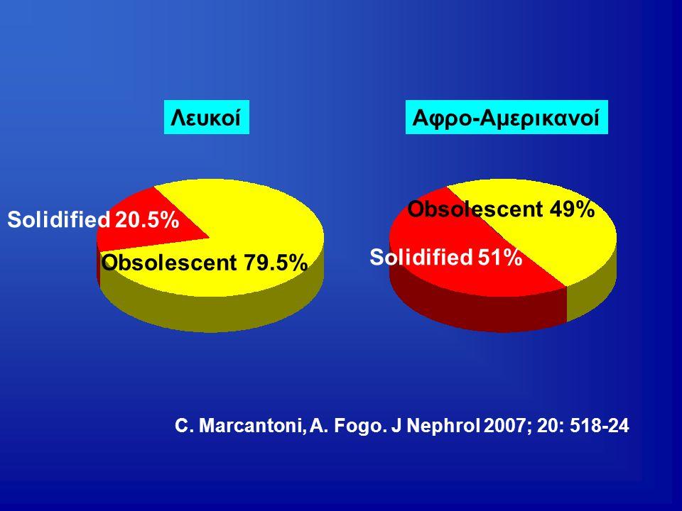 Λευκοί Αφρο-Αμερικανοί Obsolescent 49% Solidified 20.5% Solidified 51%