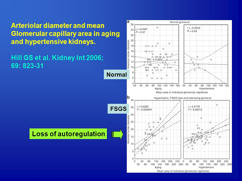 Arteriolar diameter and mean Glomerular capillary area in aging